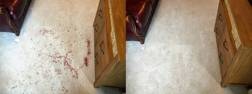 Bloody carpet before and after cleaning in Pontyclun