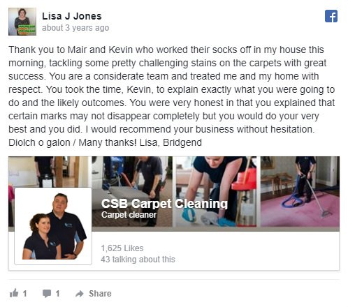Carpet cleaning review Lisa Jones