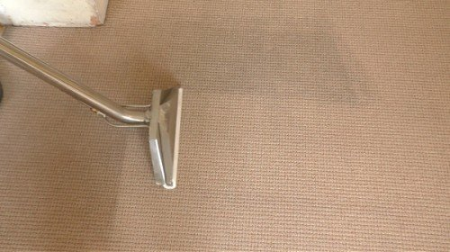 Carpet wand cleaning a beige carpet